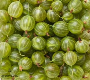 Amalaki is also known as the Indian Gooseberry and is an important Ayurvedic Herb used at our Centre in Bondi