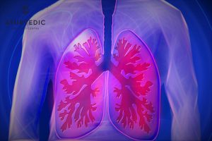 Asthma is a common respiratory ailment that can be treated at the Ayurvedic Wellness