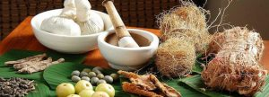 Authentic Ayurvedic herbs